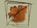 Metallic Evolution Pumpkin Leaf