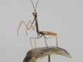 Haw Creek Forge Praying Mantis