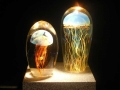 Satava Art Glass Studio