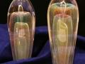 H.I.S. Glasswork